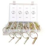 Borgpennen-borg-pennen-set-gegalvaniseerd-groot-50-delig-met-courante-maten